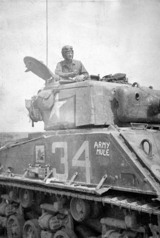 Army_Mule_3.jpg