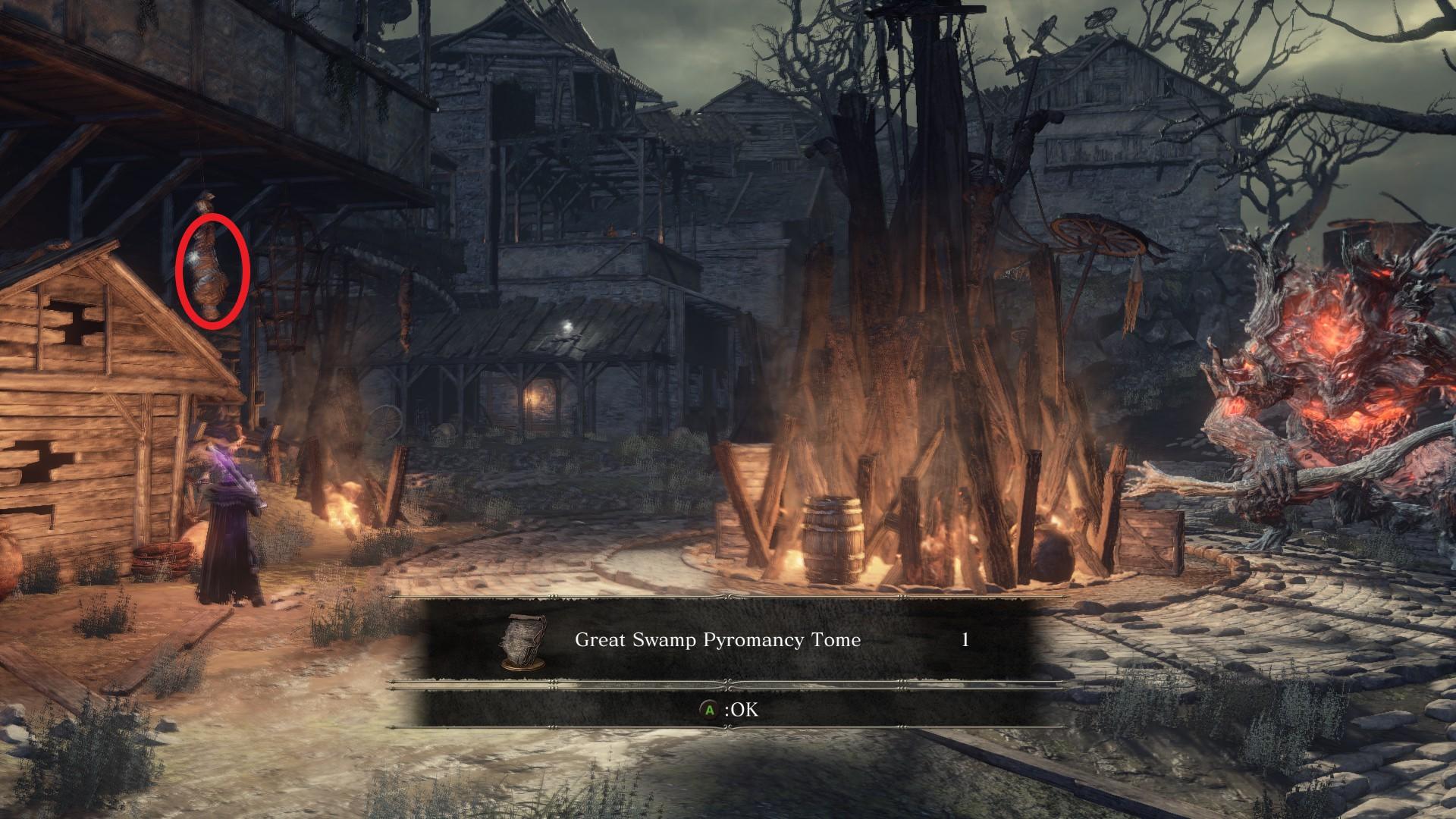 Great_Swamp_Pyromancy_Tome.jpg