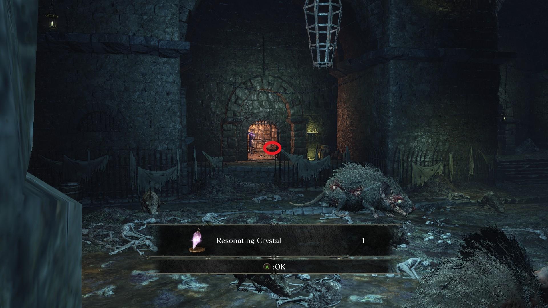 Resonating_Crystal_Irithyll_Dungeon.jpg