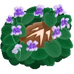 VioletsBadge150px.png