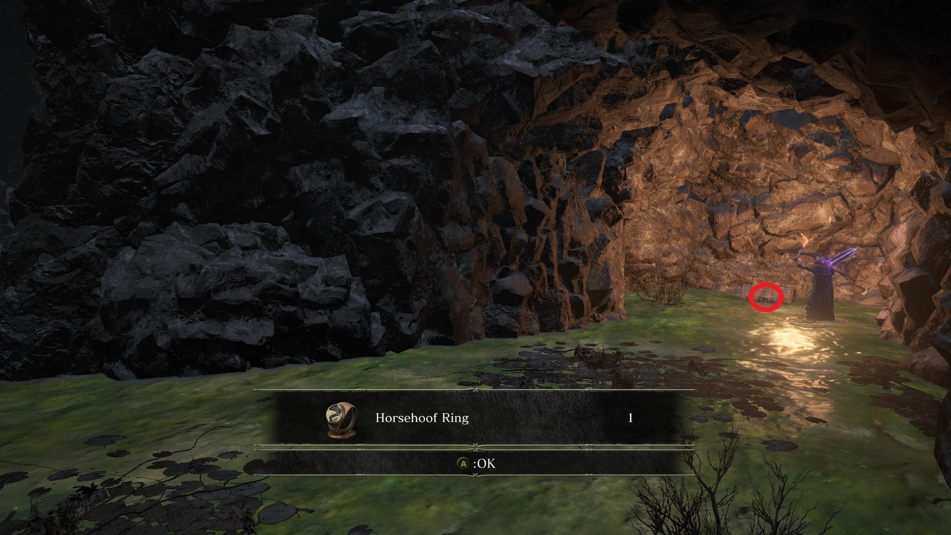 Horsehoof_Ring.jpg