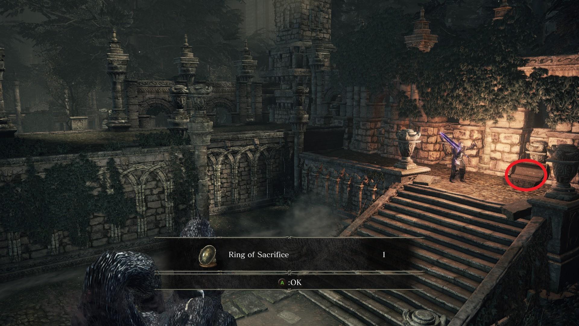 Ring_of_Sacrifice.jpg