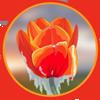 Flight_Rising_Token_Red_Orange_Tulip.png