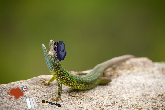 [Image: lizardCry.png]