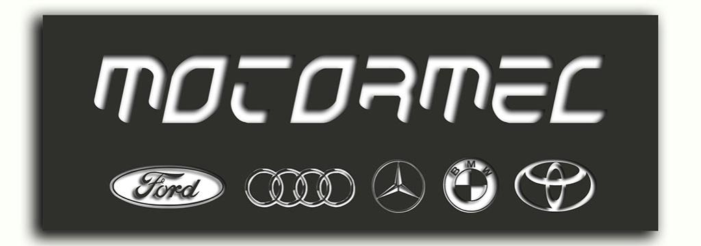 Curriculum Motomerc Motorm10