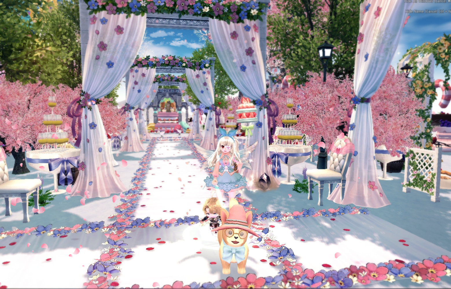 hs-wedding_aisle.jpg