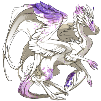 skydancer_f_dragon_2.png