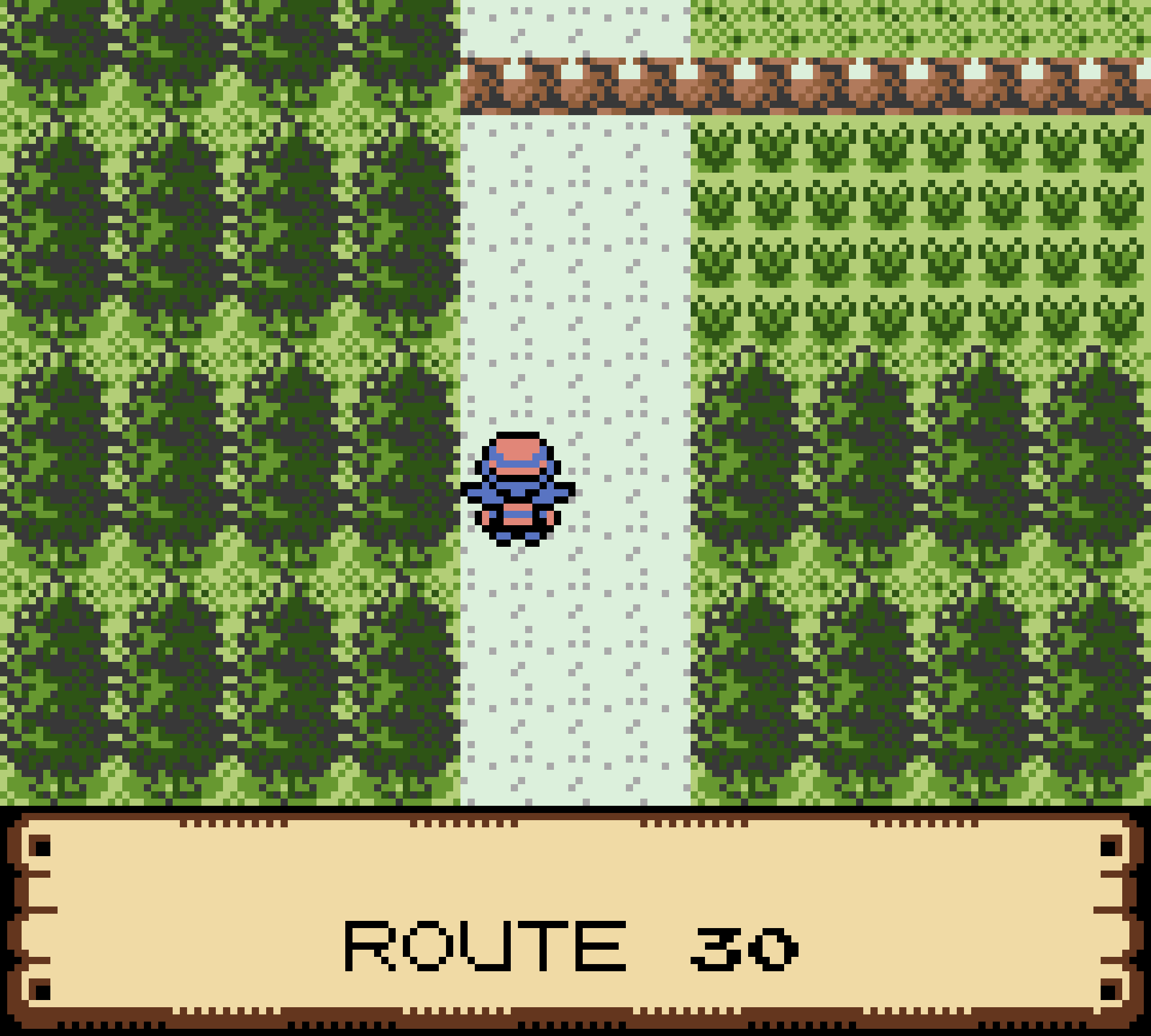 Pokemon_Crystal_Nuzlocke_2021-10-14_16.46.42.png