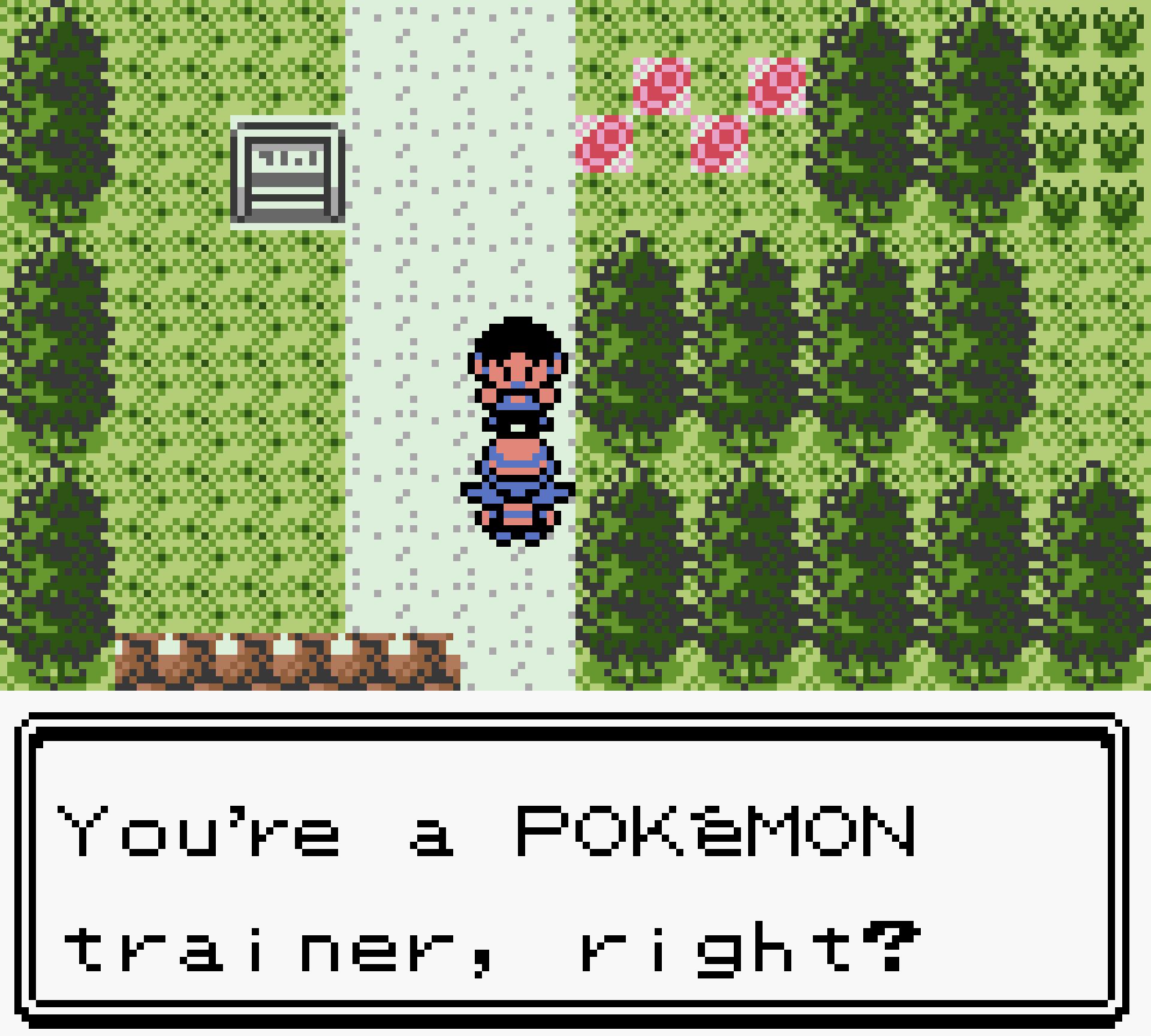Pokemon_Crystal_Nuzlocke_2021-10-14_16.51.49.png