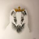 Badger#6072