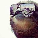 Sloth King#4950