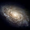 Galactic#7559