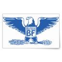 BlueFalcon#4448