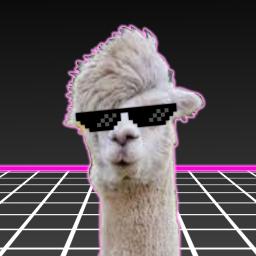 Llama Bot's Avatar Failed to Load