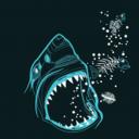 HammerHead's avatar failed to load.