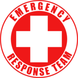 Logo for Raid Response