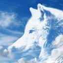 Furs-Whyte V2