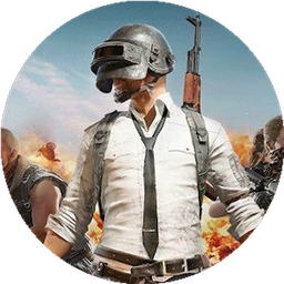 PUBGM  Guide's Avatar Failed to Load