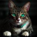 CatBot 2