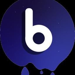 Logo for Bulgee 🐢