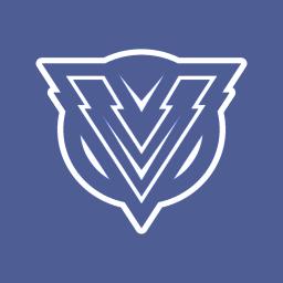 Logo for ViperProtection