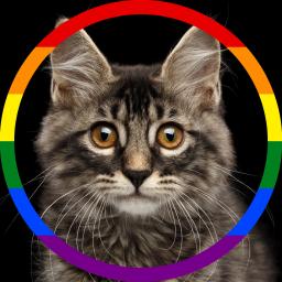Logo for Catbot
