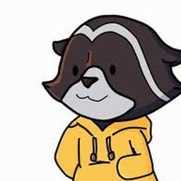 Logo for Raccoon