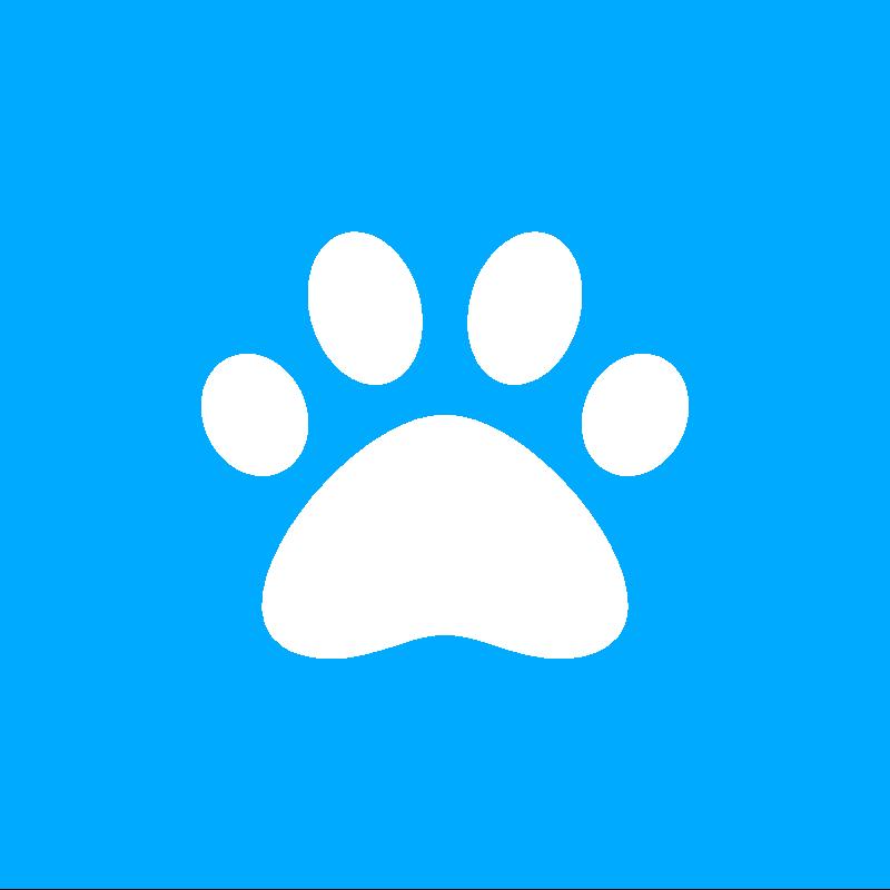 Slio#3959 avatar
