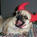 DevilFire#3218
