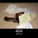 אווטאר של [http] HTTP-Cat