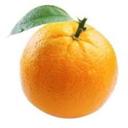 Avatar Orange Bot