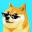 Doge Memer