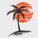 Palm__#0873