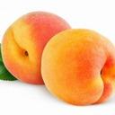 Perched Peach#9521