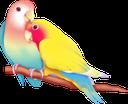 Emoji for lovebirbs