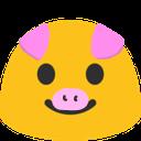 snap_pig
