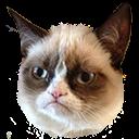 :grumpy: Discord Emote