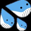 whalecum