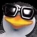 penguincool