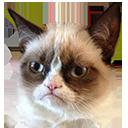 Emoji for grumpy