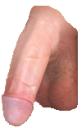 porn_cock_soft