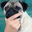 Emoji for hmBOYE