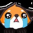 KyuCry