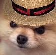 Emoji for spanishAngeryBOI