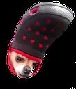 :croc: Discord Emote