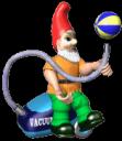 _gnome