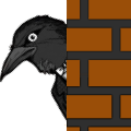 CrowWatching