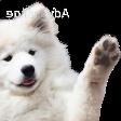 Emoji for dogWave