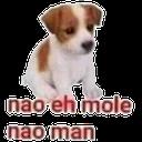 nao_eh_mole