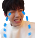 Emoji for dowoonfeels